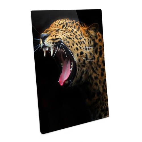 ChromaLuxe Semi Gloss White Aluminium Photo Panel