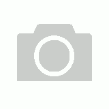 Black Rim and Handle 11oz Carton 36 Mugs